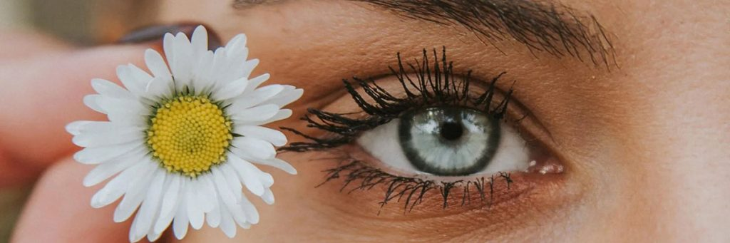 Eyebrow and Eyelash Treatments at Mi:Skin Beauty Salon